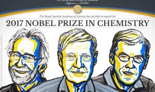Фото №1 - Нобелевскую премию по химии вручили за криоэлектронную микроскопию