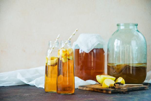 Как вырастить чайный гриб, комбуча