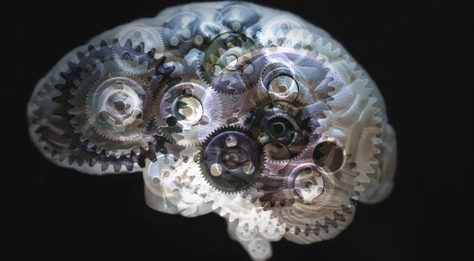 20 способов держать мозг в тонусе