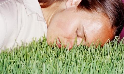 Фото №1 - Главная задача сна – очистка мозга от токсинов, накопившихся за день