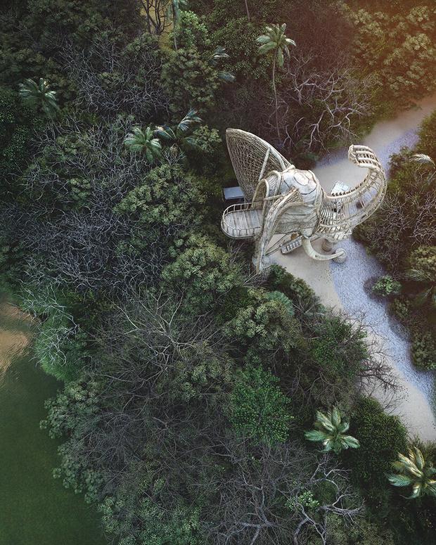 Фото №6 - Смотровая площадка в форме слона на Шри-Ланке