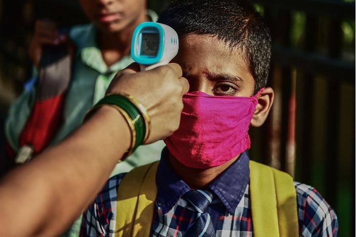 Фото №1 - В Индии выявили вспышку нового опасного вируса