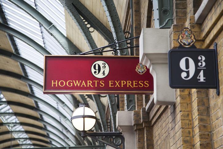 Фото №1 - Ученые объяснили успех книг о Гарри Поттере с помощью МРТ