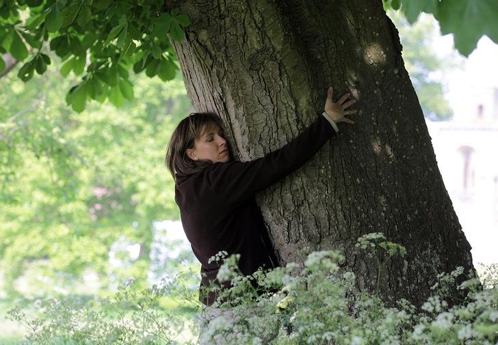 Фото №1 - Лесничество Исландии порекомендовало обнимать деревья, пока нельзя обнимать людей