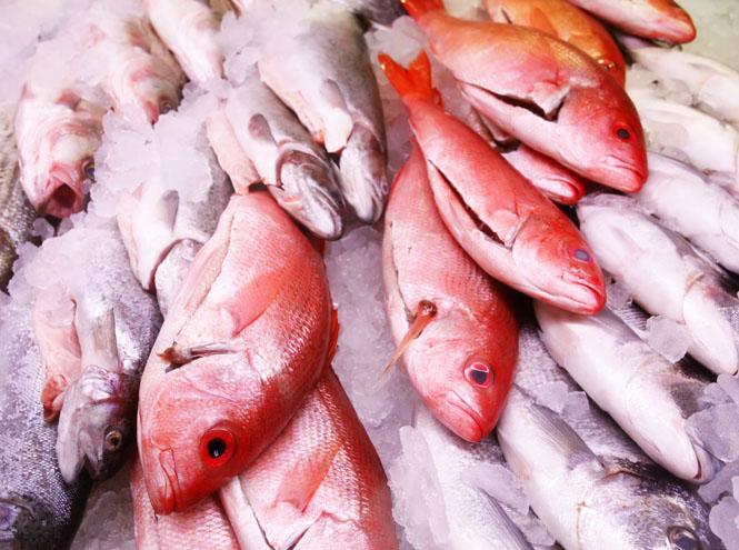 Фото №11 - 10 видов рыбы, которую лучше не есть