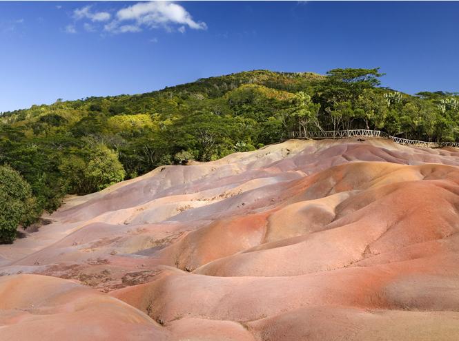 Фото №5 - Маврикий: двадцать три цвета счастья