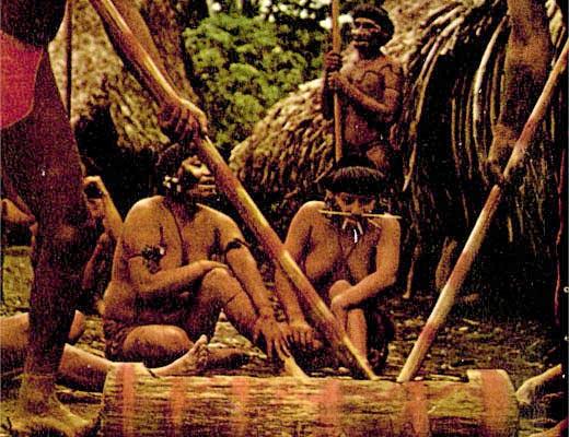 Фото №1 - Племена сельвы