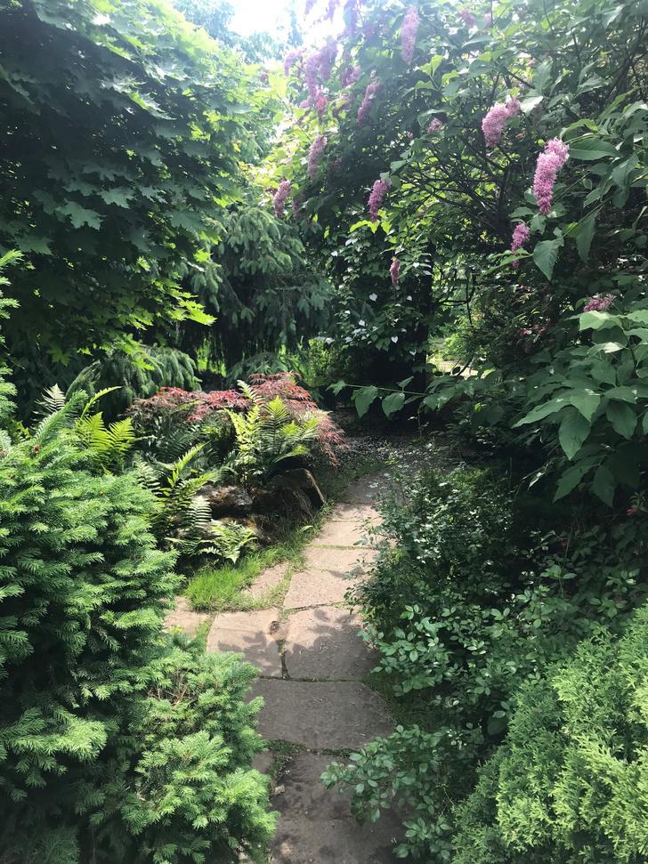 Фото №7 - ELLE DECORATION в саду у дизайнера Ирины Глик
