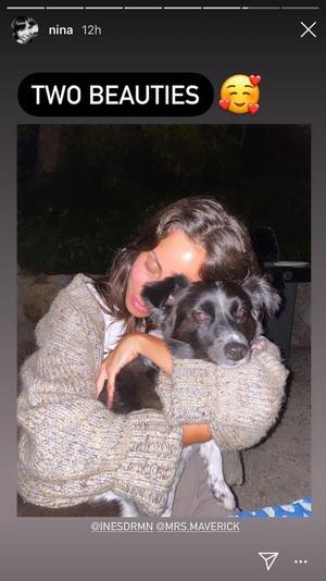 Фото №2 - Милота дня: Нина Добрев и Пол Уэсли познакомили своих собак
