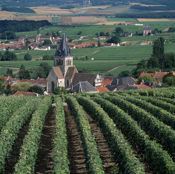 Фото №1 - Регион Шампань: едем туда, где рождается праздник