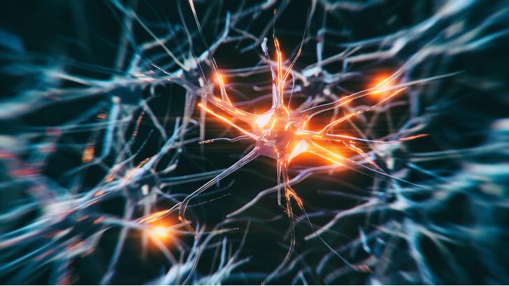 Фото №1 - Предложен новый подход к лечению болезни Паркинсона