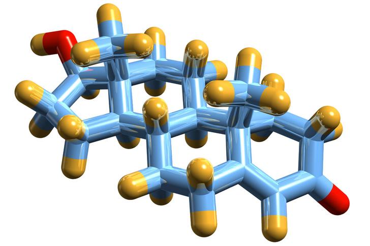 SPL/ LEGION-MEDIAСтруктура тестостерона: углерод (голубой), водород (желтый), кислород (красный)