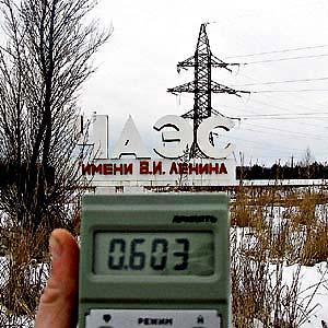 Фото №1 - Чернобыль не стал процветающей экосистемой