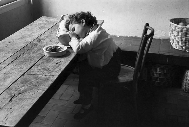 Фото №1 - Ученые выяснили, почему после обеда хочется спать