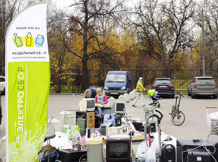 Фото №3 - Экологичная жизнь: как сортировка мусора спасет нашу планету