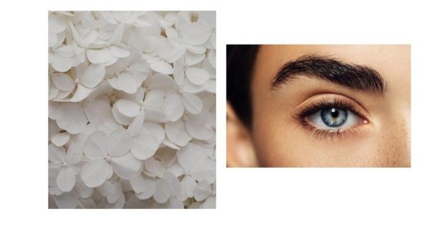 Фото №2 - На лице написано: почему стресс влияет на кожу