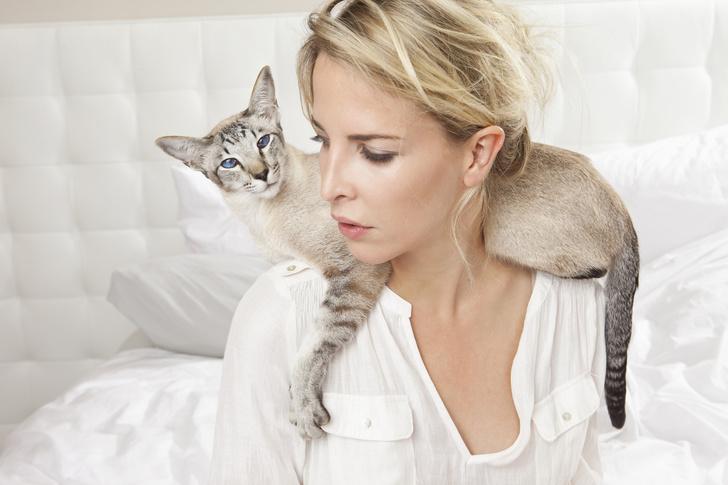 Фото №1 - Кошка нашла у хозяйки рак быстрее, чем врачи