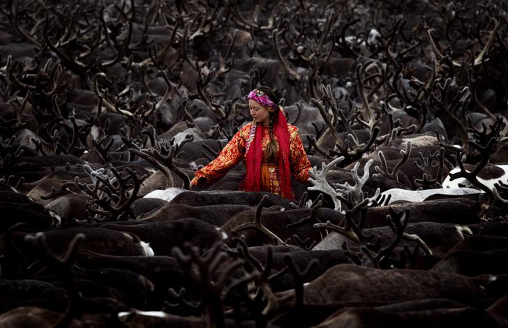 Фото №1 - Один кадр: долина реки Лонготъёган, Полярный Урал