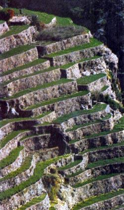 Фото №2 - Крутые тропы