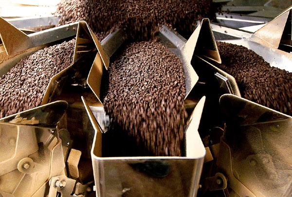 Фото №8 - Бельгия: жизнь в шоколаде