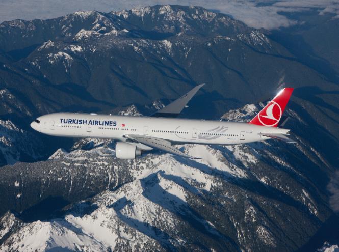 Фото №3 - Гастрономическое путешествие с Turkish Airlines