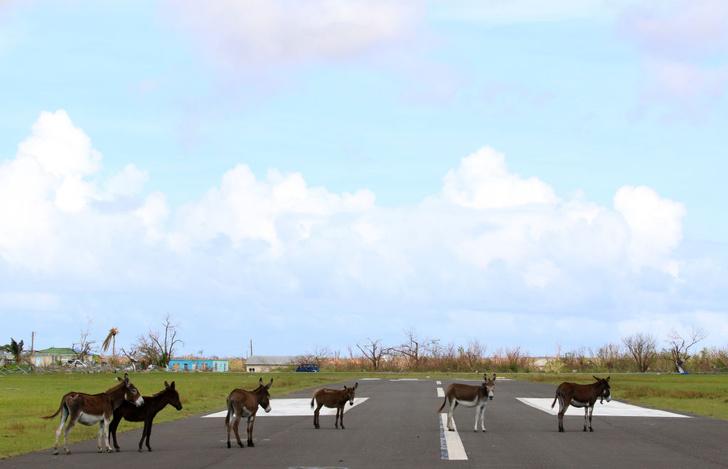 Фото №11 - Мой дом — моя крепость: 9 самых маленьких островных государств