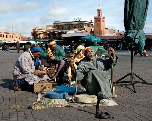 Фото №2 - Джемаа-эль-Фна. Площадь мертвых, дарящая радость