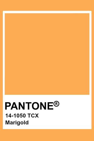 Фото №1 - Модный прогноз: институт цвета Pantone назвал главные оттенки весеннего сезона 2021