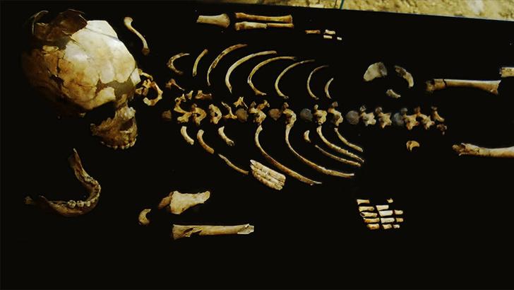 Фото №1 - Ученые рассказали о внешности неандертальцев