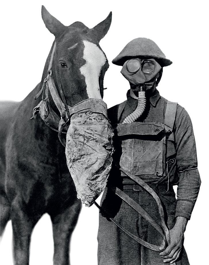 Фото №5 - 100 лет назад… изобрели танки