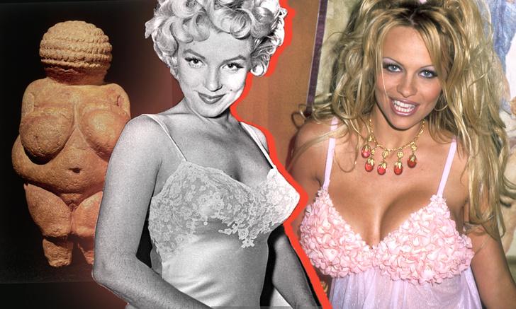 Фото №1 - Эволюция женской груди: от палеолитической Венеры до наших дней