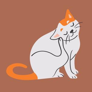 Фото №3 - Тест: Выбери котика, а мы скажем, что парням нравится в тебе