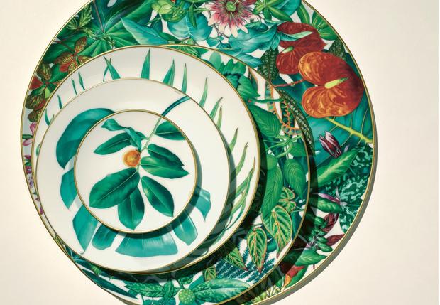 Фото №1 - Интервью с создателями новой коллекции фарфора Passifolia от Hermès