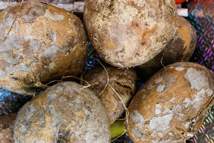 Фото №2 - А это точно съедобно? 10 необычных овощей со всего света