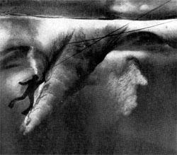 Фото №2 - Над нами — ледовитый океан