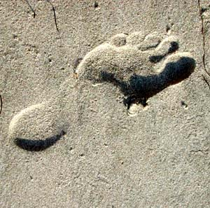 Фото №1 - В Египте обнаружен древнейший отпечаток ноги