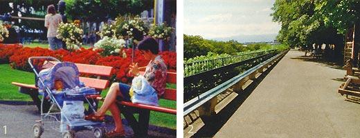 Фото №2 - Мнгновения швейцарского лета