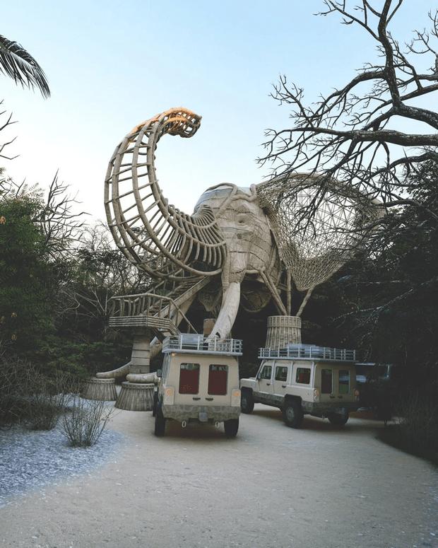 Фото №3 - Смотровая площадка в форме слона на Шри-Ланке