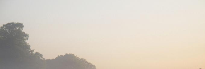 Как успокоиться и обрести устойчивость: уроки тайцзицюань