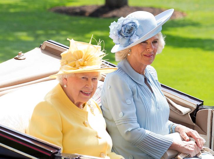 Фото №3 - Намек понят: как на самом деле Елизавета II относится к Brexit