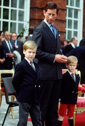 Фото №7 - Ошибки прошлого: за что Уильям не мог простить принца Чарльза