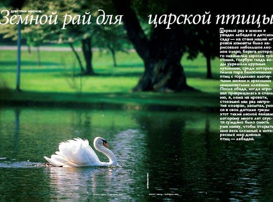 Фото №1 - Земной рай для царской птицы