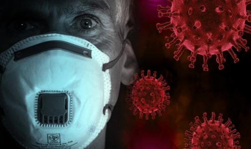 Фото №1 - За сутки в США зафиксировали более 55 тысяч случаев заражения коронавирусом
