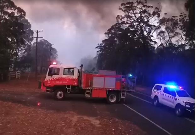 Фото №1 - С какой скоростью распространяется лесной пожар (видео)