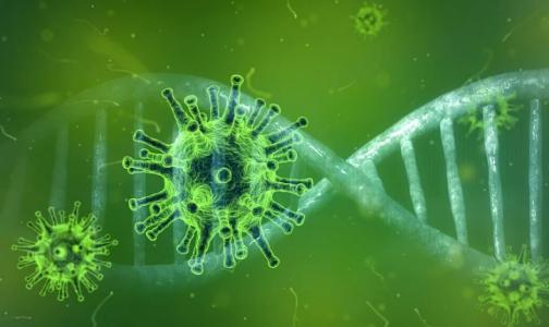 Фото №1 - В ВОЗ оценили африканский штамм коронавируса и сделали неутешительные выводы