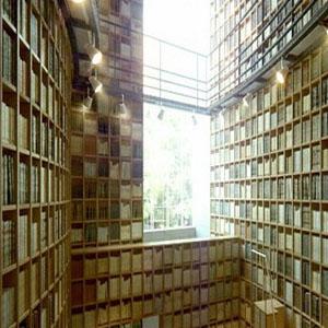 Фото №1 - Книги собираются в Москве