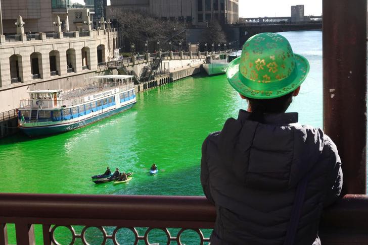 Фото №1 - Почему река стала зеленой?