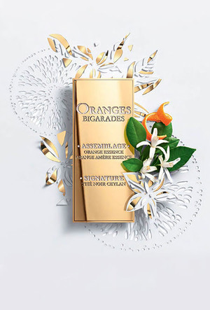 Фото №4 - Парфюмер Кристоф Рейно: «Новый аромат Lancôme – как свадьба на юге Франции!»