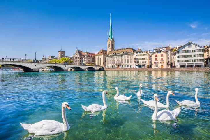 Фото №1 - Определены самые экологически благополучные города мира