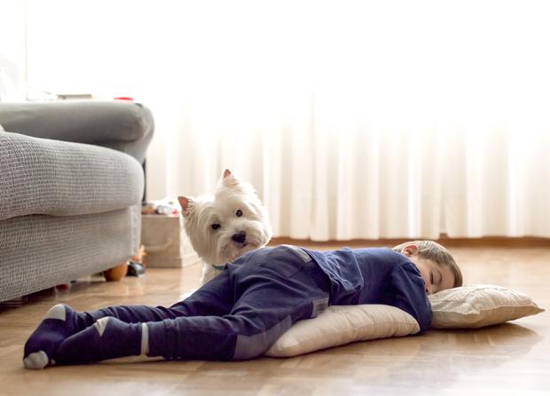 Фото №2 - «Мам, хочу собаку!» 7 веских причин завести ребенку питомца
